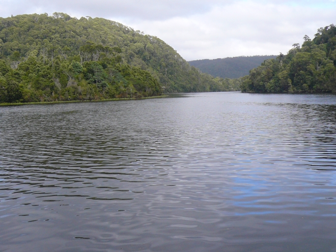 Cruising the Pieman River, western Tasmania