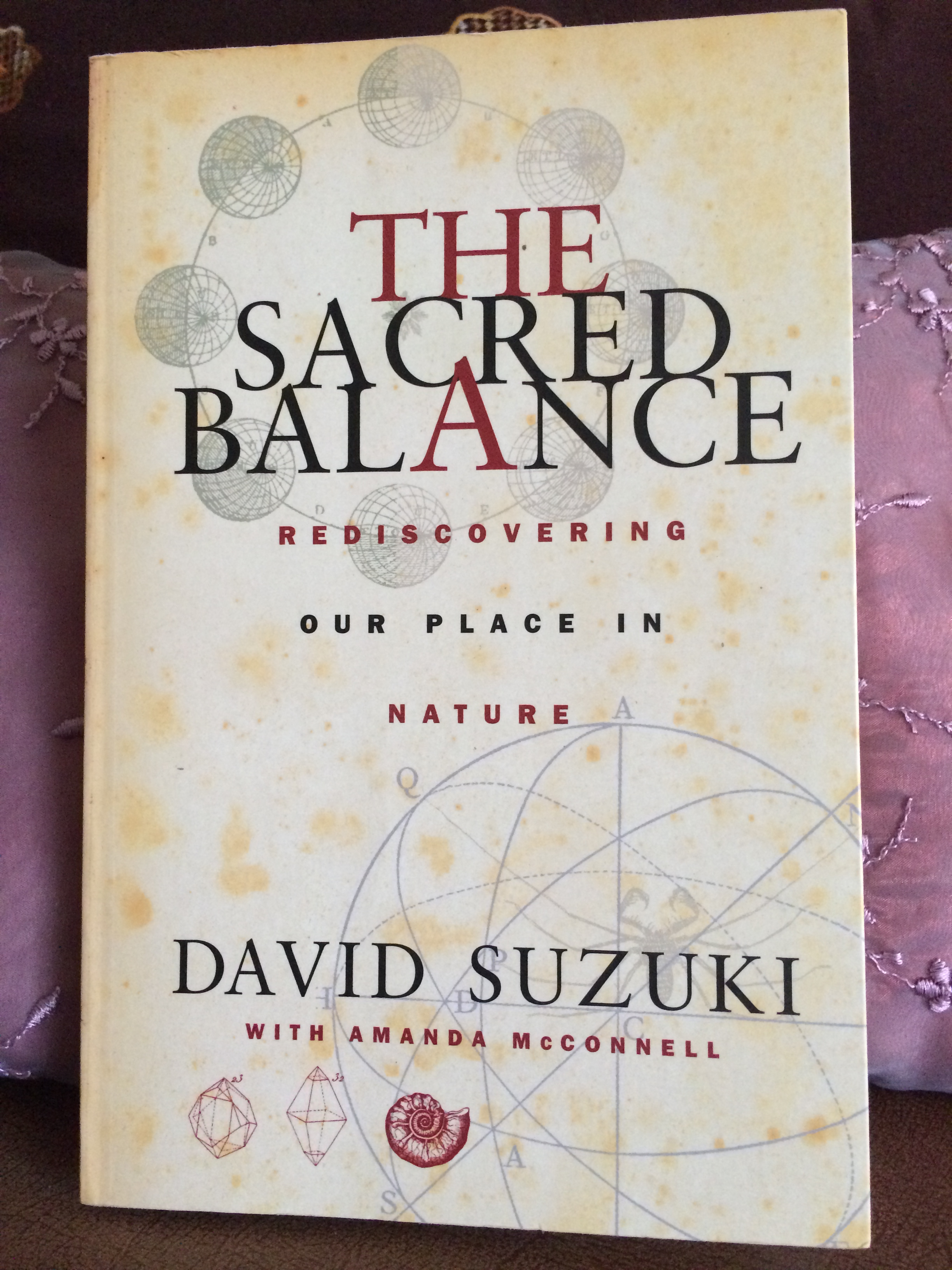david suzuki the sacred balance thesis The sacred balance is david suzuki's way of showing us the relationship between humans and nature the book first tells of how nature is much bigger and more significant than the human race, and how the environment surrounding humans is far more important than humans themselves.
