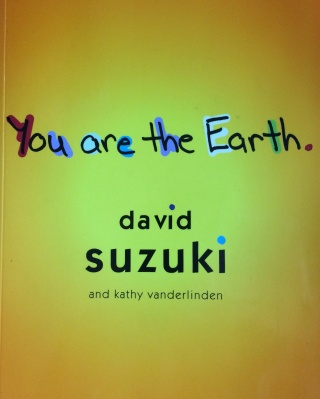 Children are the audience for this book on the elements by David Suzuki and Kathy Vanderlinden.