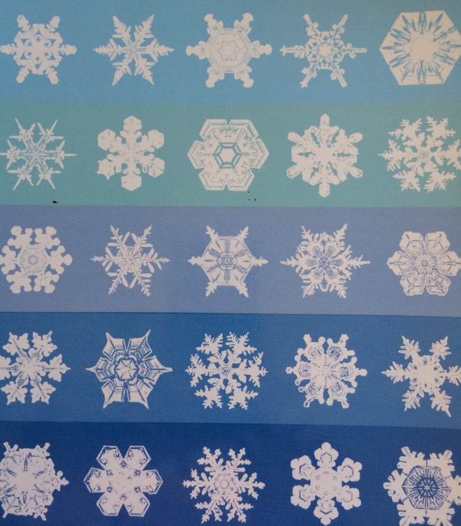 Illustrations of different snow crystals on the front cover of Bentley and Humphreys (1962; first published in 1931).