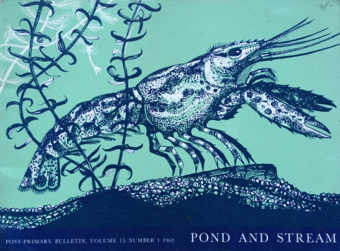 This 1962 publication from New Zealand beautifully illustrates the patterns of life in ponds and streams, life that is also dependent on water.
