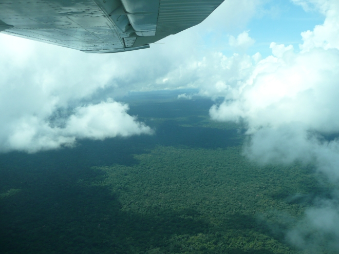 Flying through, over and above the clouds was an unforgettable experience. As was the expansive forest below.