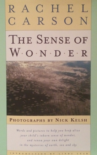 The Sense of Wonder by Rachel Carson. This 1998 version was published with the nature photographs that Rachel Carson envisaged would accompany her text.