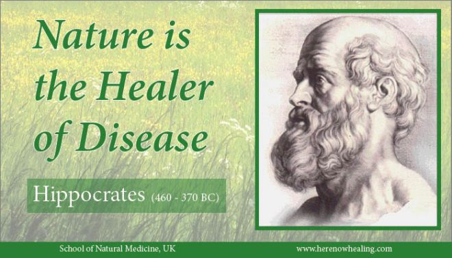 Hippocrates, the founder of western medicine, also equated food with medicine. He also saw nature as a healer - the four elements in Hippocratic medicine were earth, Air, Water and Fire. His well known quote 'Let food be thy medicine and medicine be thy food' is coming back into fashion with greater attention being paid in the west to the relationship between food and health. Clean water, air, soil and energy are an integral part of this discussion.