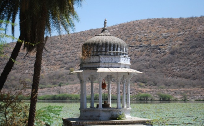 This image comes from a post by Mukul on Lotus Lake in the desert State of Rajasthan, a lake surrounded by palaces and Temples. Mukul travels widely in India and posts frequently so there is always something new to discover. Source: 'Enchanted Forests'.
